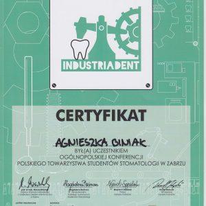 certyfikat_0004-1